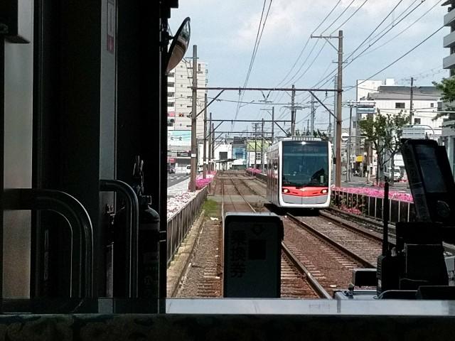 f:id:hikarireinagatsuki:20200501130247j:image