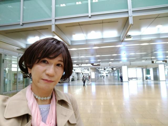 f:id:hikarireinagatsuki:20200501131405j:image