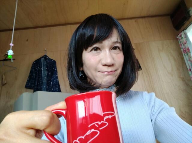 f:id:hikarireinagatsuki:20200524010532j:image