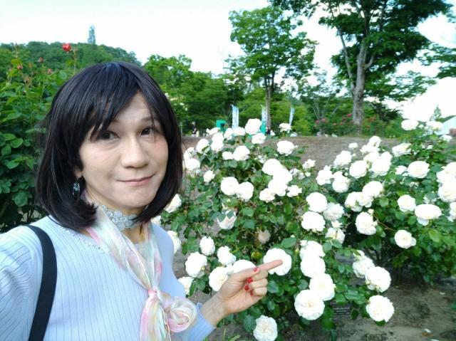 f:id:hikarireinagatsuki:20200525132222j:image