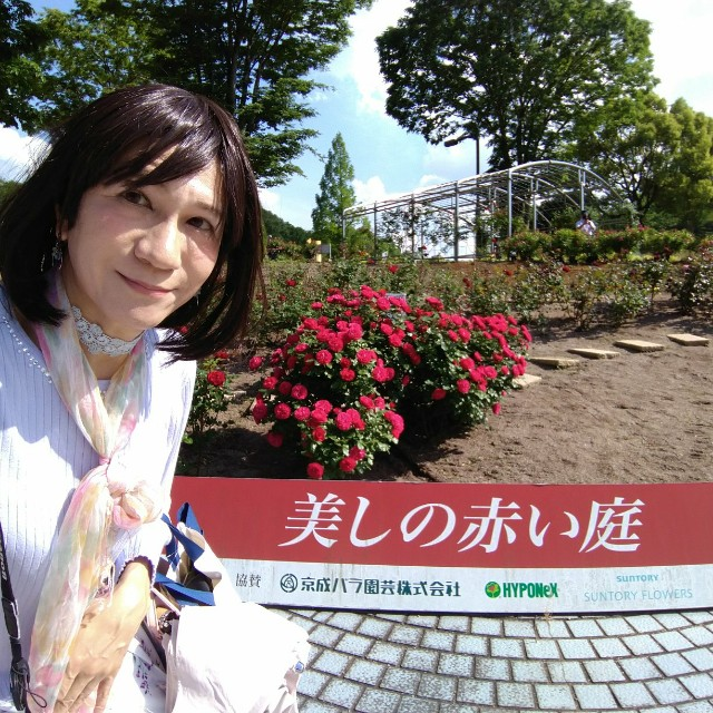 f:id:hikarireinagatsuki:20200525132242j:image