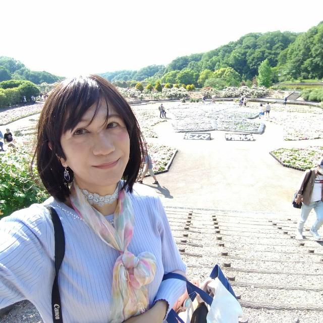 f:id:hikarireinagatsuki:20200525132307j:image