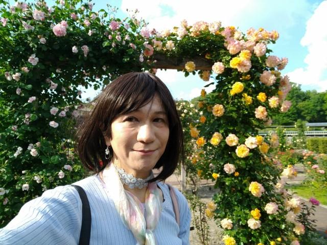 f:id:hikarireinagatsuki:20200527101923j:image