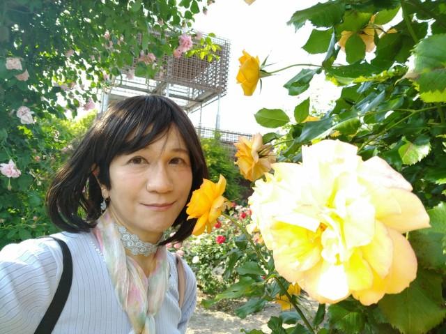f:id:hikarireinagatsuki:20200527143429j:image
