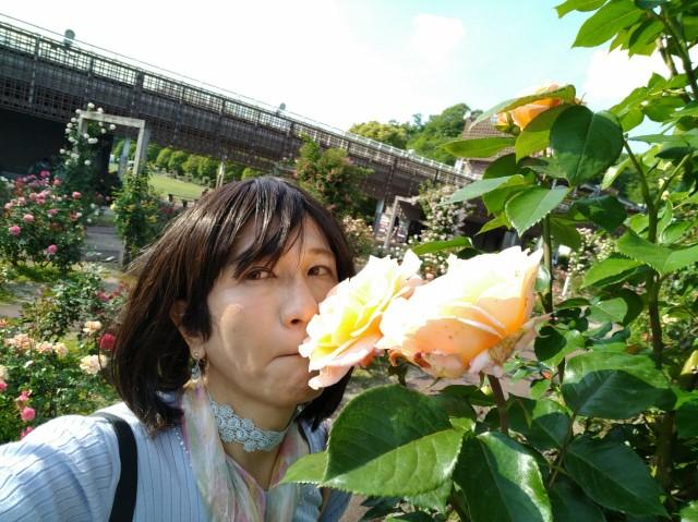 f:id:hikarireinagatsuki:20200527143456j:image