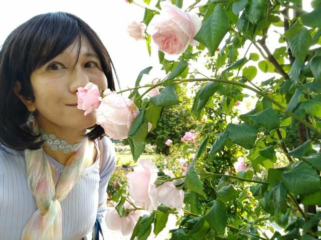 f:id:hikarireinagatsuki:20200527143631j:image