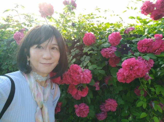 f:id:hikarireinagatsuki:20200527143748j:image