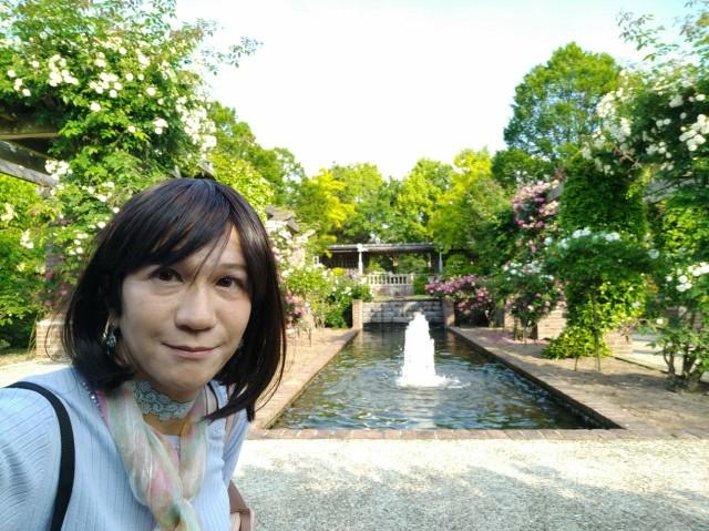 f:id:hikarireinagatsuki:20200527143758j:image