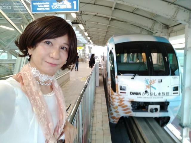 f:id:hikarireinagatsuki:20200601163431j:image