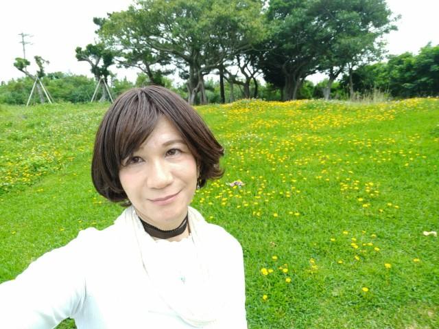 f:id:hikarireinagatsuki:20200602082302j:image