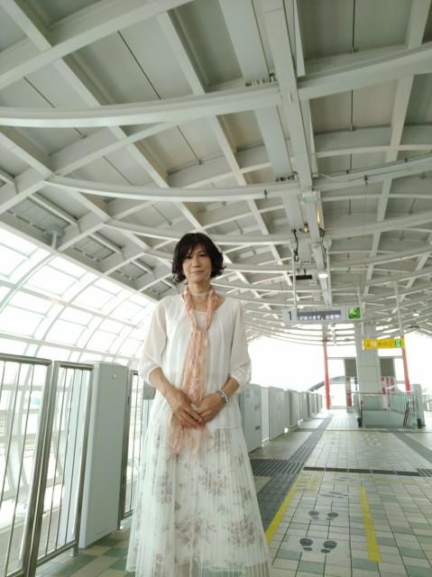 f:id:hikarireinagatsuki:20200603094822j:image