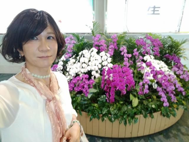 f:id:hikarireinagatsuki:20200603101210j:image