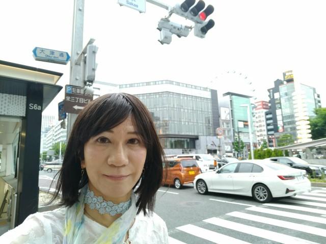 f:id:hikarireinagatsuki:20200615132059j:image