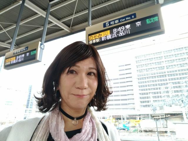 f:id:hikarireinagatsuki:20200629105130j:image