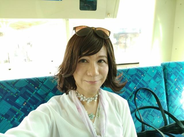 f:id:hikarireinagatsuki:20200629112317j:image