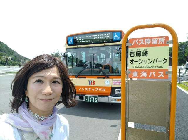 f:id:hikarireinagatsuki:20200629113125j:image