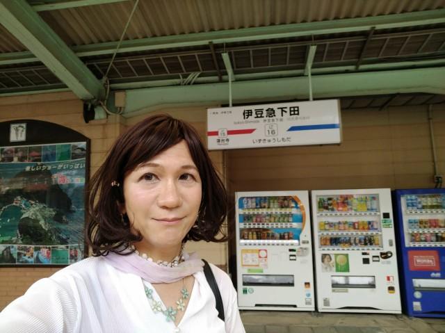 f:id:hikarireinagatsuki:20200629114008j:image
