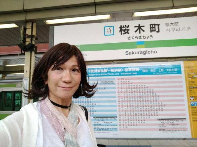 f:id:hikarireinagatsuki:20200629115448j:image