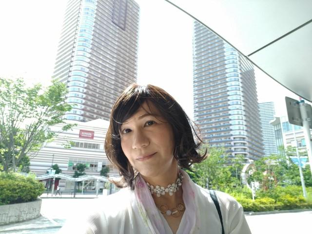 f:id:hikarireinagatsuki:20200629170435j:image