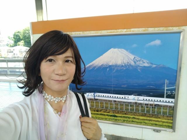 f:id:hikarireinagatsuki:20200629170549j:image