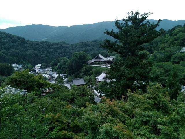 f:id:hikarireinagatsuki:20200712140158j:image