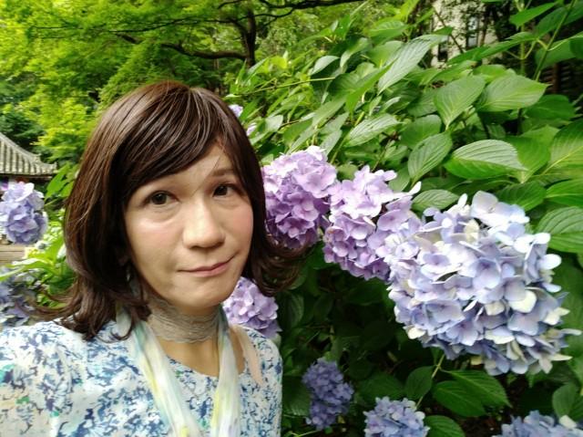 f:id:hikarireinagatsuki:20200712140253j:image