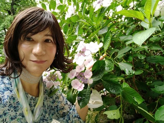 f:id:hikarireinagatsuki:20200712140327j:image
