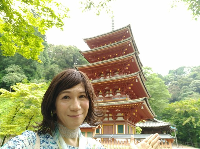 f:id:hikarireinagatsuki:20200712140345j:image