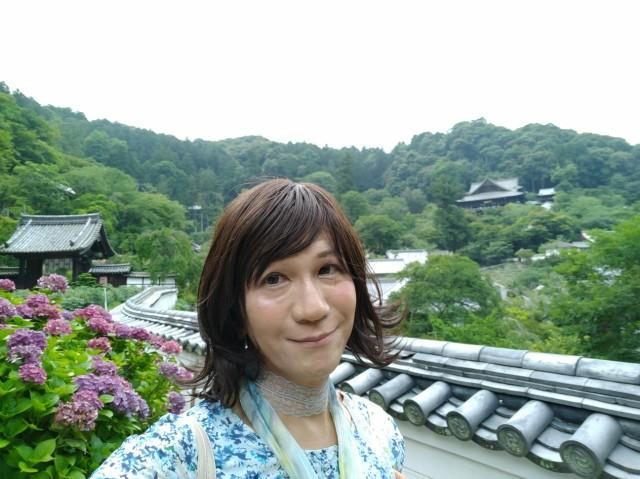 f:id:hikarireinagatsuki:20200712140450j:image