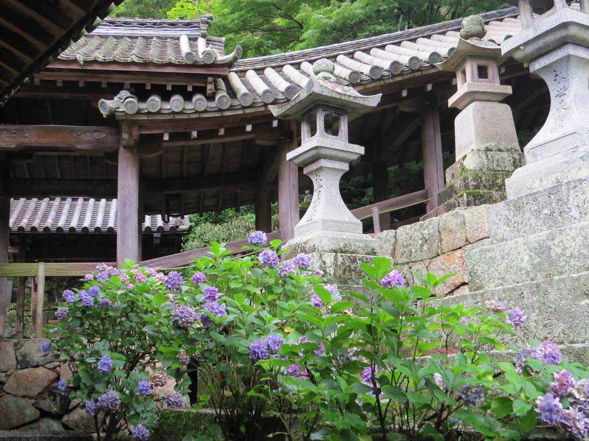 f:id:hikarireinagatsuki:20200713000413j:plain