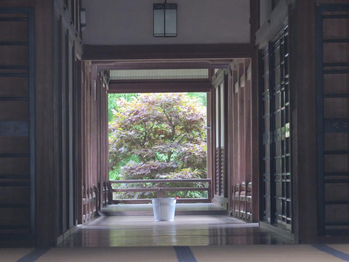 f:id:hikarireinagatsuki:20200713001411j:plain