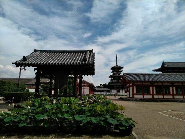 f:id:hikarireinagatsuki:20200722113712j:image