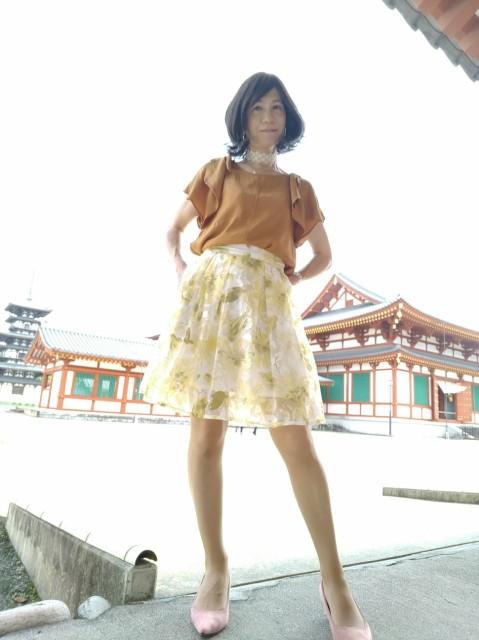 f:id:hikarireinagatsuki:20200722114158j:image