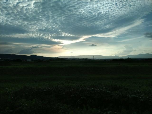f:id:hikarireinagatsuki:20200722114527j:image