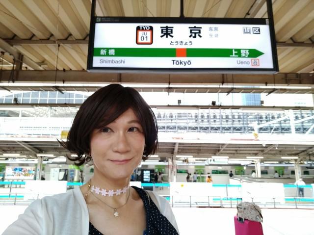 f:id:hikarireinagatsuki:20200725160804j:image
