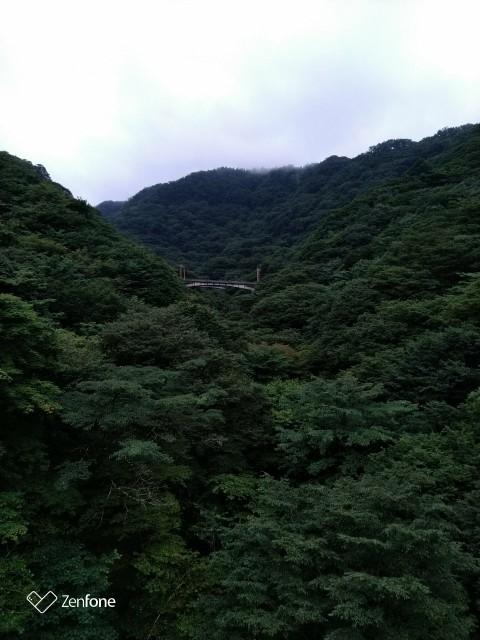 f:id:hikarireinagatsuki:20200730120430j:plain