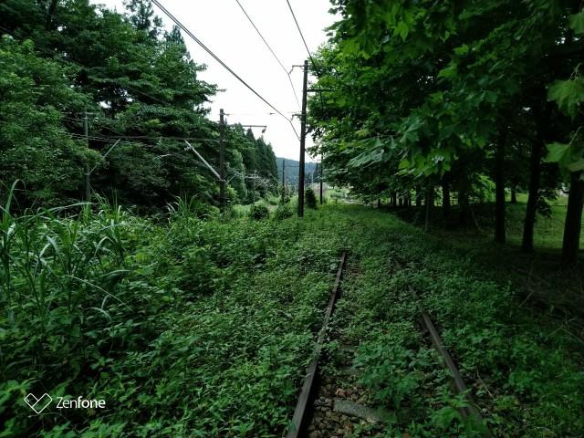 f:id:hikarireinagatsuki:20200730121219j:plain