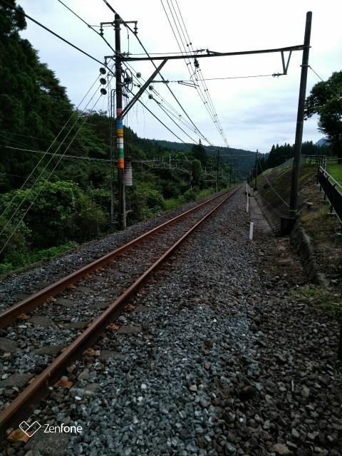 f:id:hikarireinagatsuki:20200730121428j:plain
