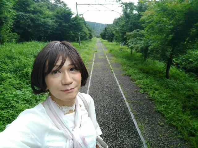 f:id:hikarireinagatsuki:20200730121457j:plain