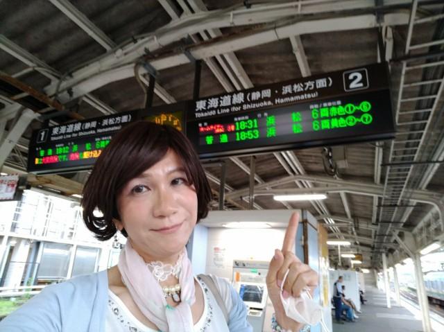 f:id:hikarireinagatsuki:20200730205148j:image