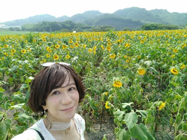f:id:hikarireinagatsuki:20200815191041j:plain