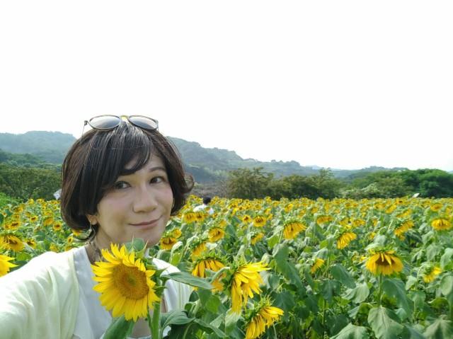 f:id:hikarireinagatsuki:20200815191117j:plain