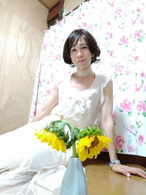 f:id:hikarireinagatsuki:20200815192214j:image