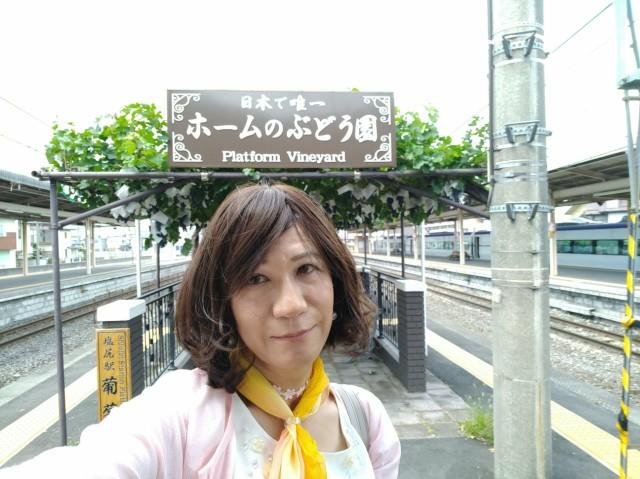 f:id:hikarireinagatsuki:20200823161540j:image