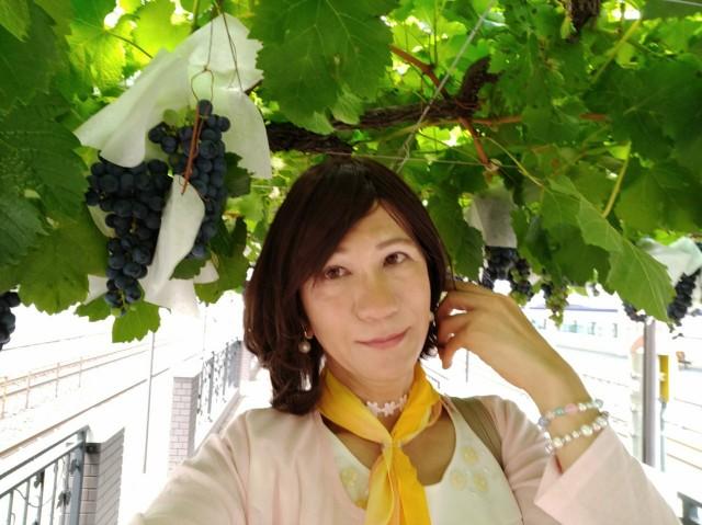 f:id:hikarireinagatsuki:20200823161612j:image