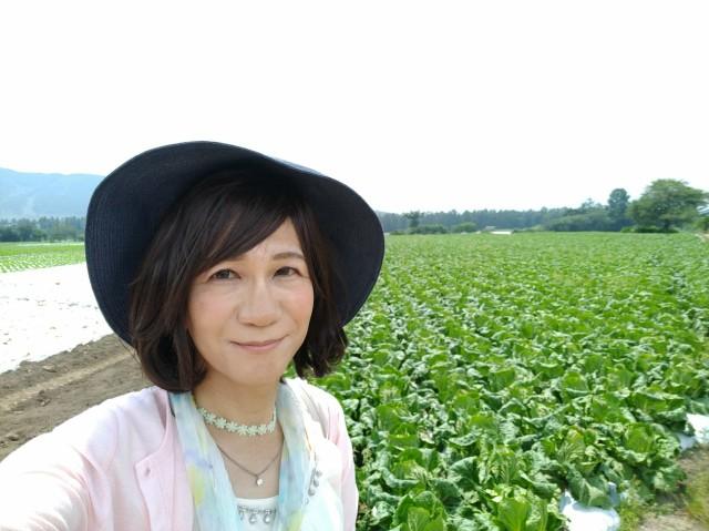 f:id:hikarireinagatsuki:20200825143356j:image