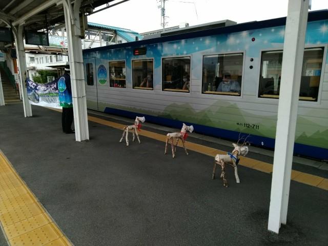 f:id:hikarireinagatsuki:20200825174350j:image