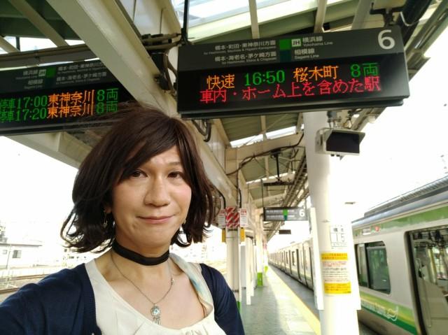 f:id:hikarireinagatsuki:20200825182019j:image