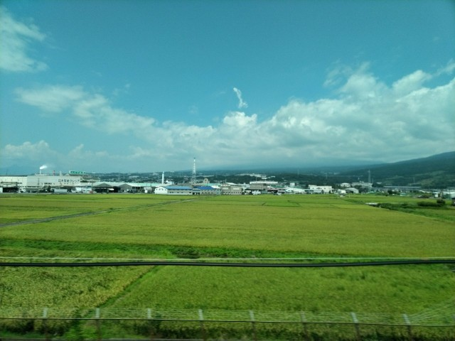 f:id:hikarireinagatsuki:20200825183242j:image