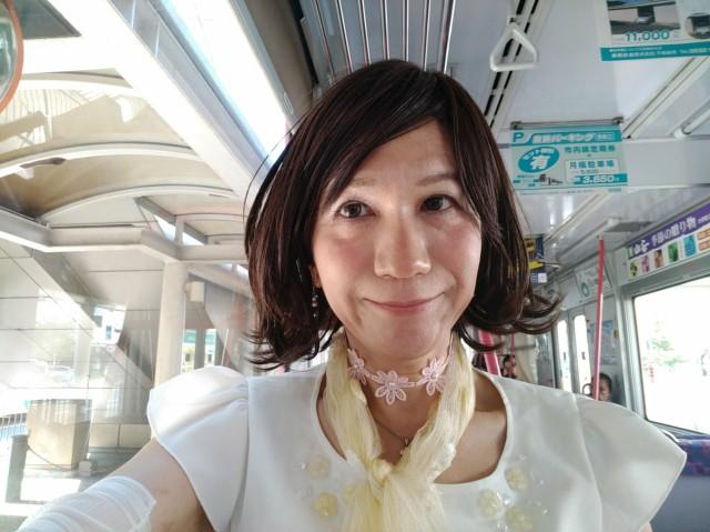 f:id:hikarireinagatsuki:20200907184223j:image